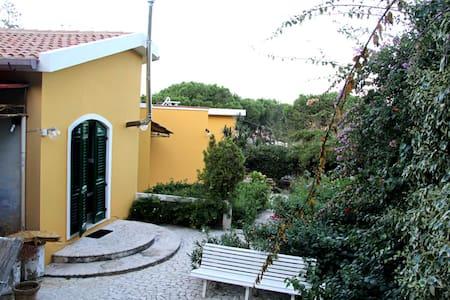 L'atelier sul Tirreno - Villa