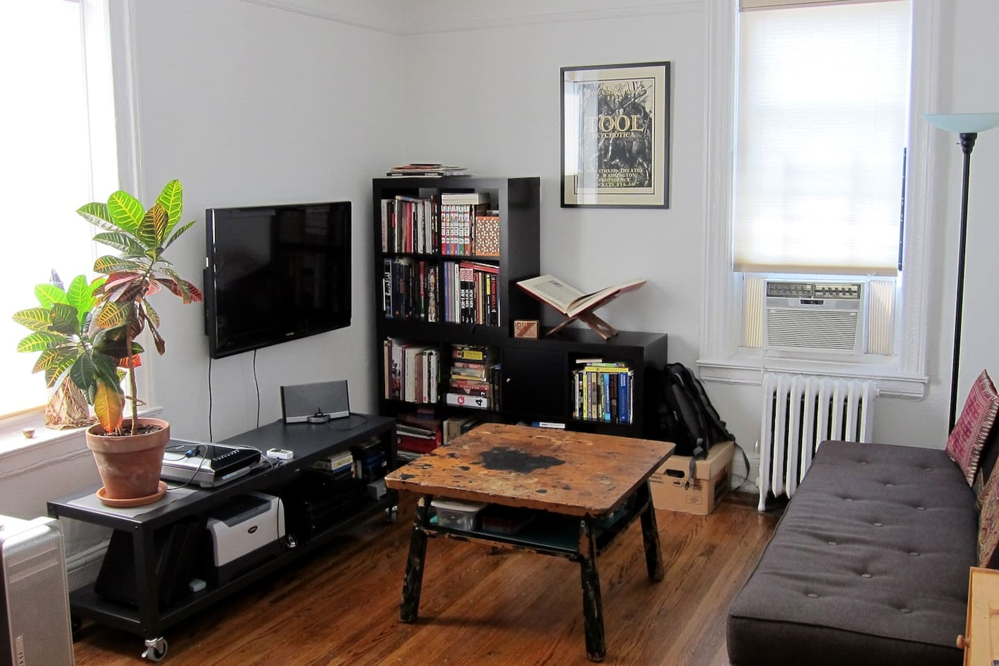"""Lots of light! 40"""" LCD screen plus PS3, Fold down Bo Concept sleeper sofa, vast book collection"""