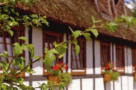 Das gemütliche Reetdachhaus  - Bed & Breakfast