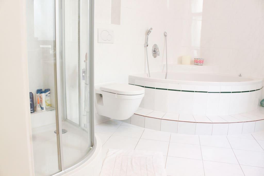 Huge bathroom with bathtub and shower.