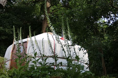 Garden Yurt less than 1hr from London - Yurta
