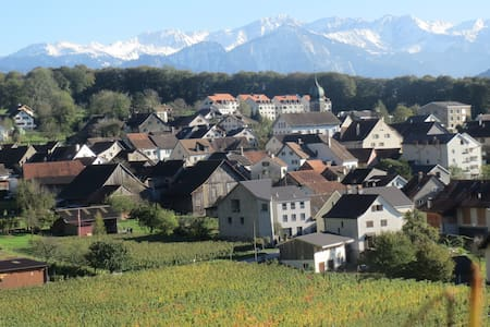 Wohnen im Weinbau Dorf  Fläsch - Appartement