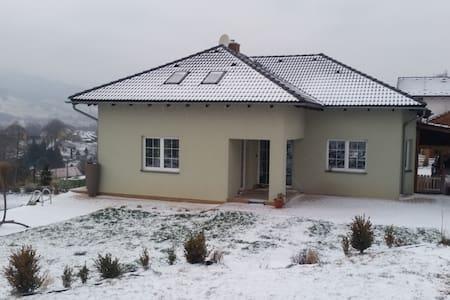 Nový dům se zahradou a bazénem - Liberec