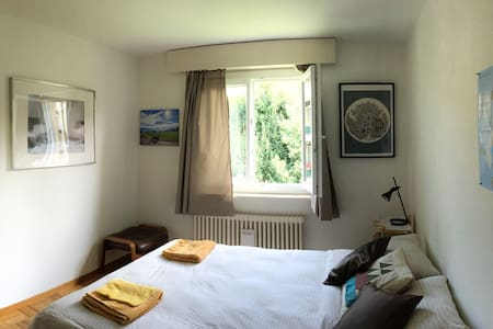 A beautiful room in a beautiful place of Suisse - Appartement