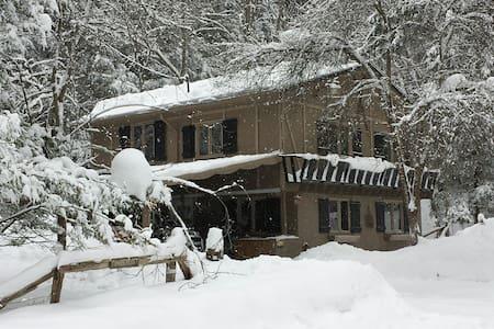 Timberlost Cabin - Cattaraugus - Cabaña