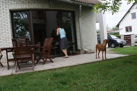 Lovely family house near Balaton - Bed & Breakfast