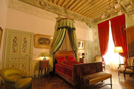 "Chambre ""Verte"" Château XVIIeme - Kastil"