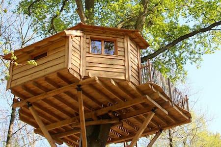 Cabane dans les arbres Secrète - Raray - Boomhut