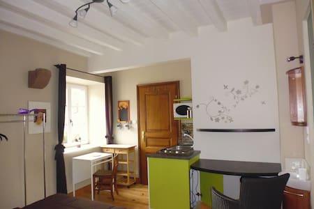 Joli studio 16 m2 - Dom