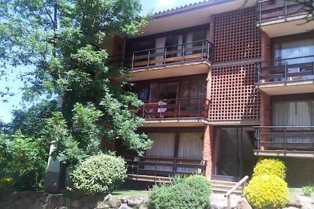 Tranquilidad y vistas en Viladrau - Apartment