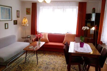 Prachtig appartement van 57m2 Terra - Appartement