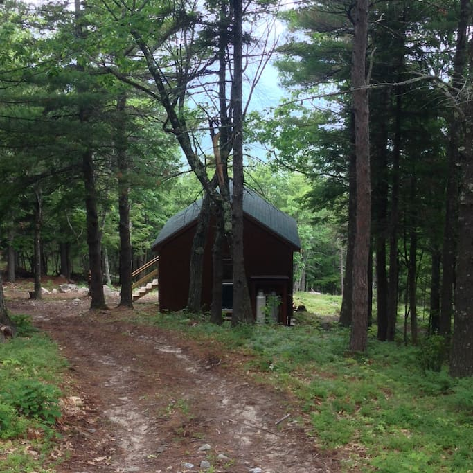 Pathway to enter the cabin