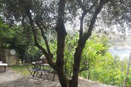 Villa Belvedere - il Cappero - Palinuro