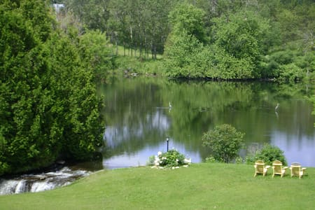 Woodsong Country Bed & Breakfast  - Uxbridge - Wikt i opierunek