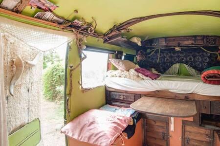 The Green Bus - Estepona - Camper/RV