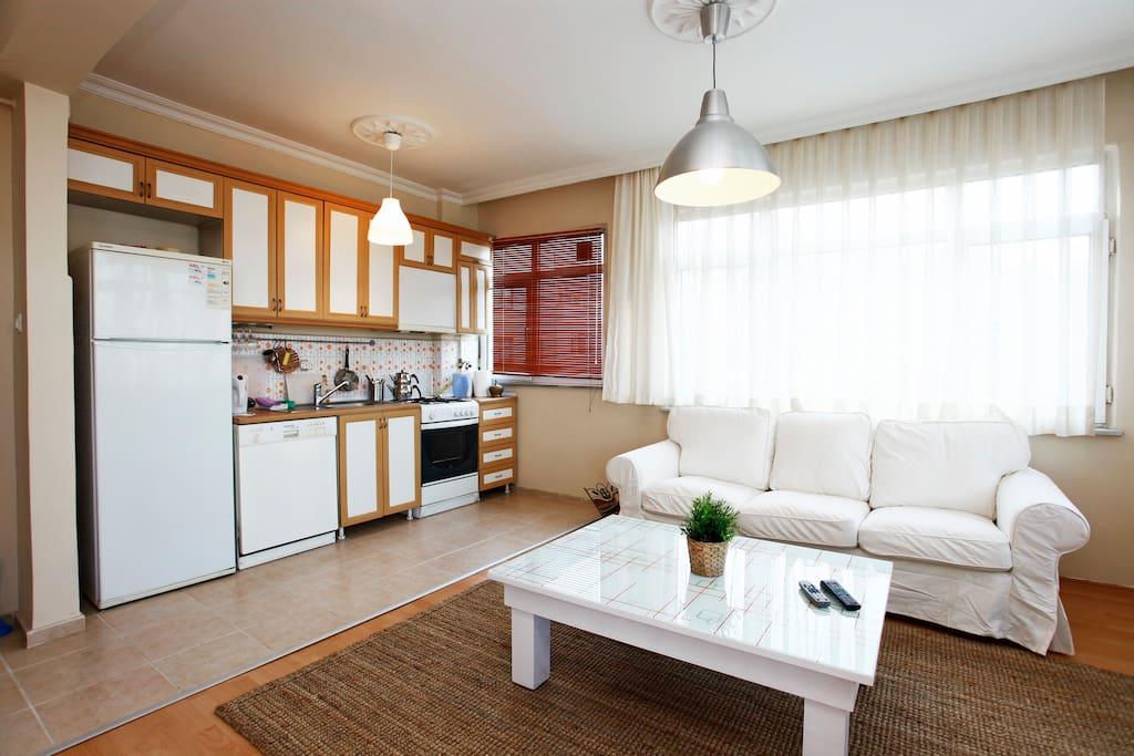 refrigerator, dishwasher, oven, plates, cutlery, full kitchen