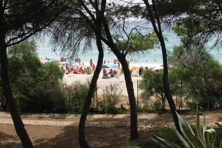 villa Luisa few steps to the beach