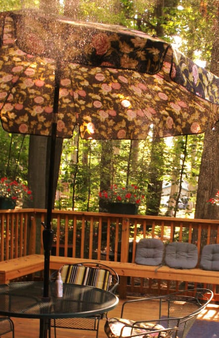 Your Own Room in a Charming Cabin!