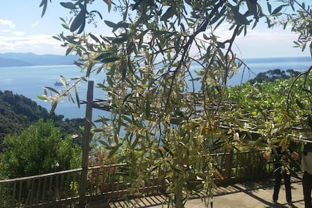 Portofino' s beaches and Park - Bed & Breakfast