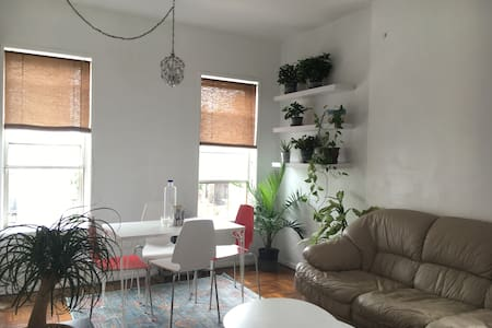 Cozy and Clean Apartment Steps from Prospect Park - Brooklyn - Apartment