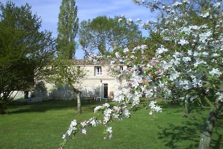 L'Authentique en Périgord cheminée - Naussannes - Appartement