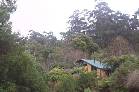 Yarra Ranges Cosy Mountain Retreat - East Warburton - Maison
