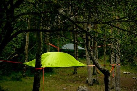 Bivouac suspendue dans les arbres P - Salles-Curan - Tent
