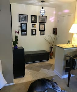Cozy one-bedroom retreat near IAD - Kondominium