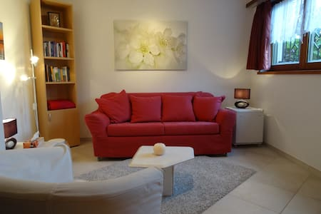Small and cosy. Close to Zürich! - Appartement