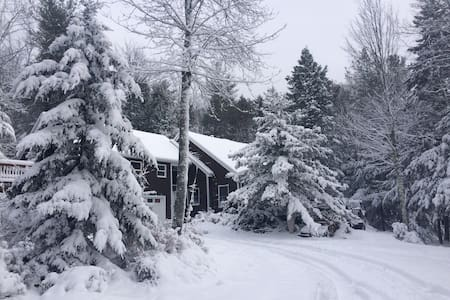 Hunter Mountain ski house. Mountaintop Retreat. - Elka Park - House