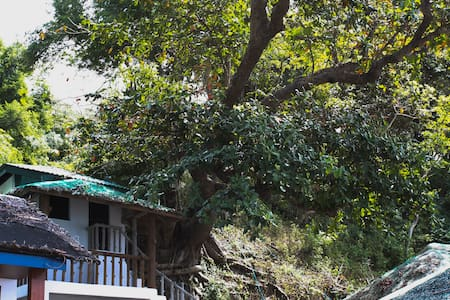 Bus Stop Dive Resort-the Treehouse