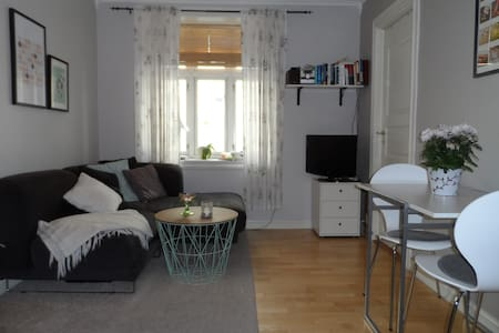 Central 1-BR apt for singles or a couple - Appartement