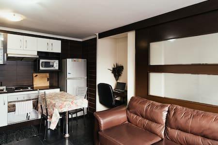 Flat in Santiago center - Apartment