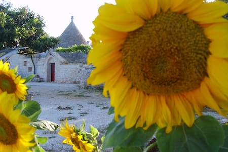 A large tipical rustic house : TRULLI - Ceglie Messapica - House