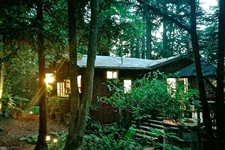 Pippin's Cottage - A Forest Haven