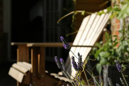 Single in Charming House & Garden