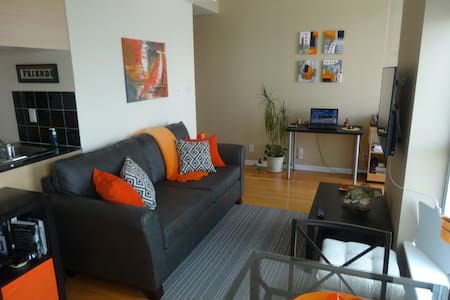 This unit is located in Downtown Toronto within walking distance to most Tourist Attractions.  Five min. walk to CN Tower/Aquarium/Rogers Centre, steps to the Harbour Front, TTC at Front Door, full lake view.  Beautifully decorated for all your needs