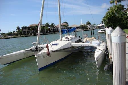 Tri Muirin - Entire SailBoat - Clearwater - Boot