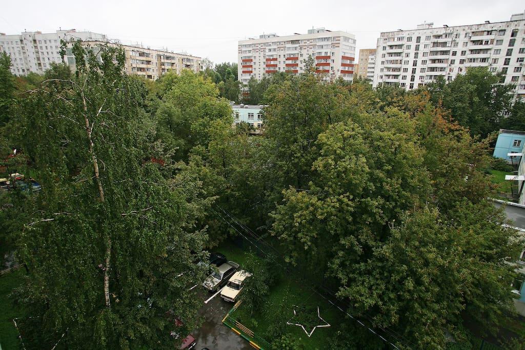 Вид из нашего дома