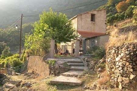 Maison avec jardin arboré / A Costa - Talo