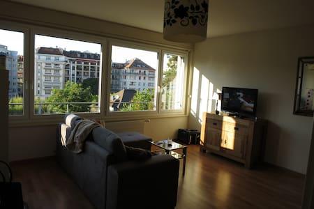 Magnifique appart au centre de Genève - Wohnung
