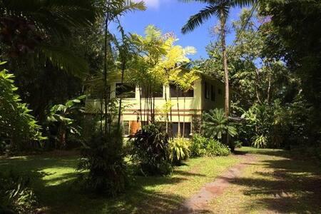 Hana Palms Combo - Hāna - House