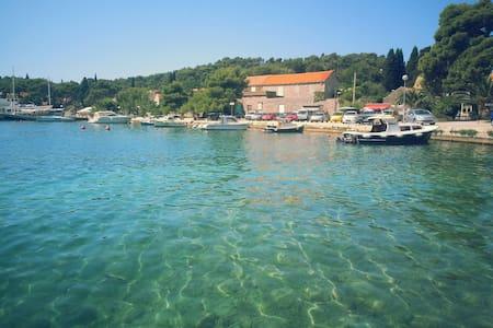 House None in Zaton near Dubrovnik