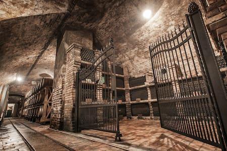 Stari podrum *** - Penzion (B&B)