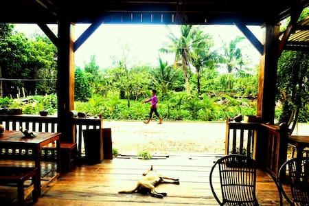 Relaxing island experience in Koh Rong Samloem. - Krong Preah Sihanouk - Bed & Breakfast