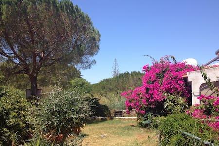 Relax in Beautiful Rural Algarve - Algoz