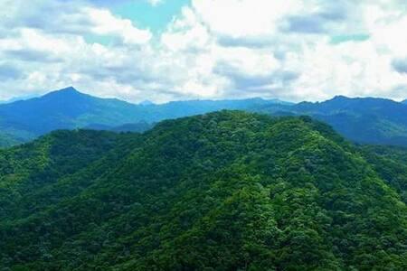 Sustainable Eco-Cabin in the Valley - Buena Vista de Las Marías