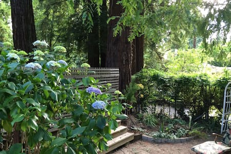 Privacy, Sunshine & Redwood Trees! - Casa