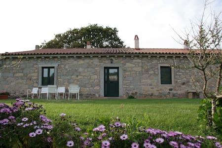 Stazzo Concasoni-Villa-Casa Tipica