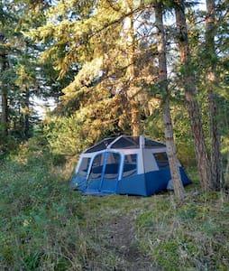 Cozy Hilltop Wall Tent 10'x14' - Tenda